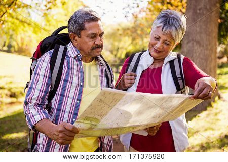 Mature couple looking a map in a park