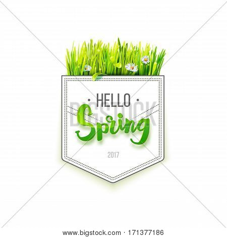 Hello Spring lettering on pocket with green grass isolated on white background. Spring background. Design for banners, greeting cards, spring sales. Vector illustration