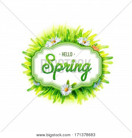 Spring label with chamomile flowers and green grass on white background. Spring banner. Vector illustration