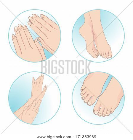 Beautiful female hands and feet manicure and pedicure. Body care set design vector