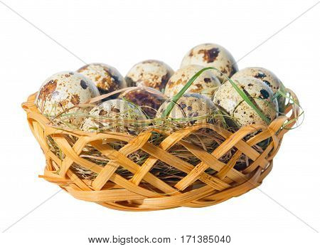 quail eggs with straw in basket isolated on white background close up