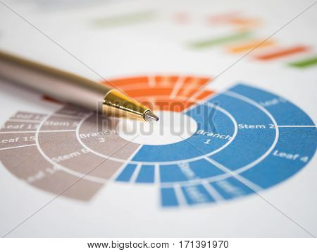 Close pen on business pie charts and graph (Selective focus)