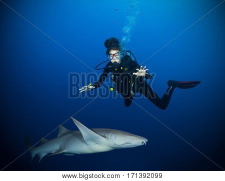 Underwater photo of woman diver being scary of bonnethead shark