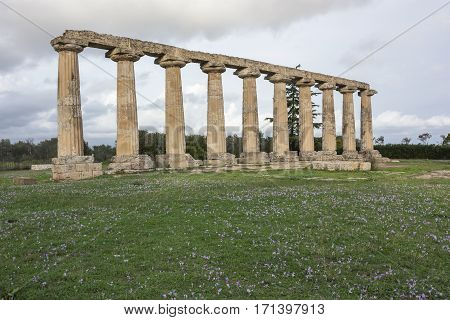 Palatine Tables the Sanctuary of Hera Metaponto Basilicata Italy understood as the concept of education and culture