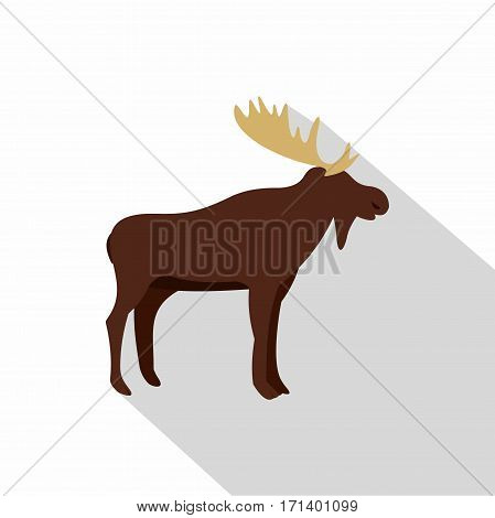 Wild elk icon. Flat illustration of wild elk vector icon for web isolated on white background