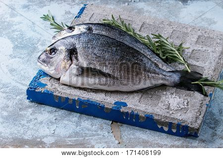 Raw Bream Fish With Herbs