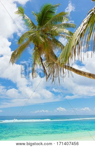 Palm View Green Getaway