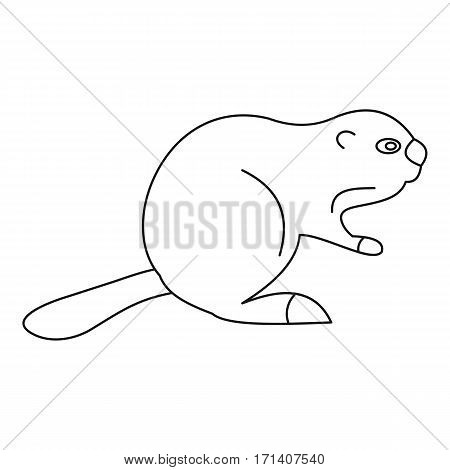 Beaver icon. Outline illustration of beaver vector icon for web