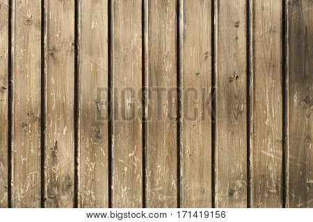 Wood grey texture background old panels .