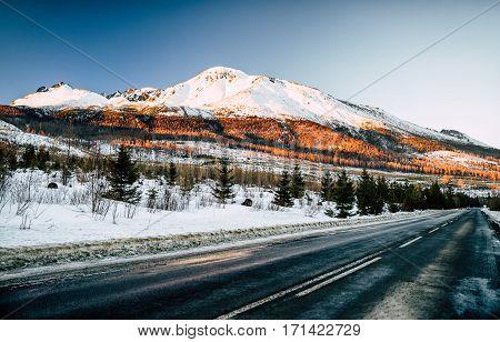 Empty asphalt road in High Tatras mountains Slovakia