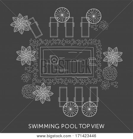 Swimming pool Top View with outdoor elements. Landscape plan. Summer time