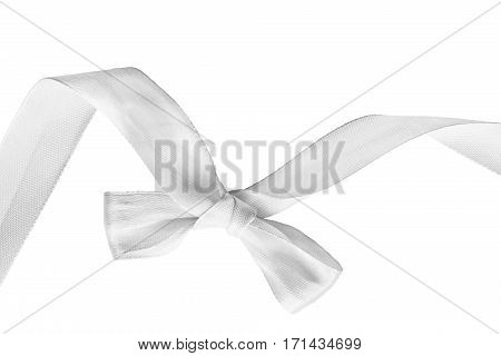 White tied bow silk decorative ribbon on white background