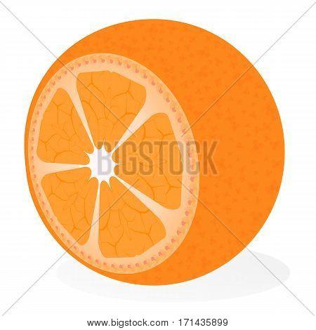 Vitamin C. Healthy eating, citrus scent. Illustration of fruit