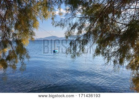 View through the tree branches on the colorful fishing boat on blue water at sunset Aegean sea Chalcis Greece