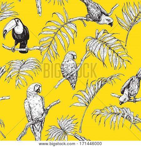 Hand drawn seamless pattern with tropical birds and palm fronds on orange background. Black and white images of parrots and toucan sitting on branches. Vector sketch.