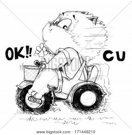 Cat enjoys 3 wheel bike and shows finger symbol is ok see you Character pencil sketch design black and white.