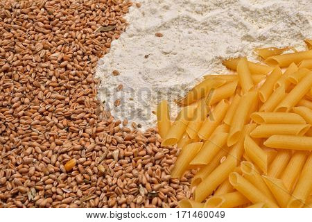Some Raw Penne Macaroni, Wheat, White Flour. Raw Material And Finished Product Pasta. Healthy Food.