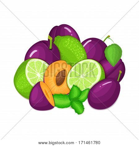 Composition of several plum citrus lime fruit and mint leaves. Ripe vector plums limes fruits with fresh pepper mint leaf. Group of tasty fruits for design packaging juice cocktail healthy food