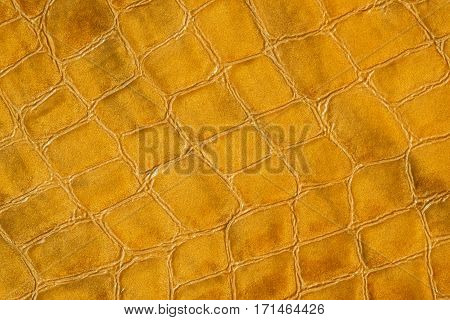 Texture of genuine leather close-up, embossed under the skin a crocodile. For modern pattern, wallpaper or banner design. With place for your text