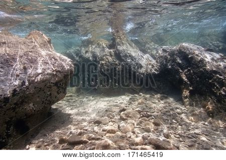 Shallow Underwater Crevice In A Rocky Coastal Area. Small Shoal Of Fish And Sea Urchins. Wide Angle