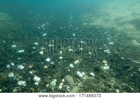 Tin Can And Plastic Garbage Polluting The Sea Floor. Underwater Shot, Wide Angle, Selective Focus