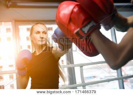 Young sportswoman engaged in boxing in gym