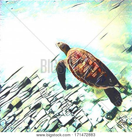 Sea turtle swimming underwater. Abstract digital illustration of tropical nature. Exotic wild animal in natural environment. Ocean life and ecosystem. Snorkeling with green sea turtle image