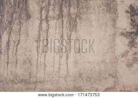 Backgroung of natural light gray stone wall texture