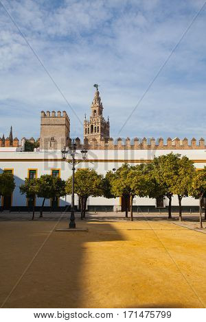Seville cathedral Giralda tower from Alcazar of Sevilla Andalusia Spain. The Alcázar of Seville is a royal palace in Seville Spain originally developed by Moorish Muslim kings.