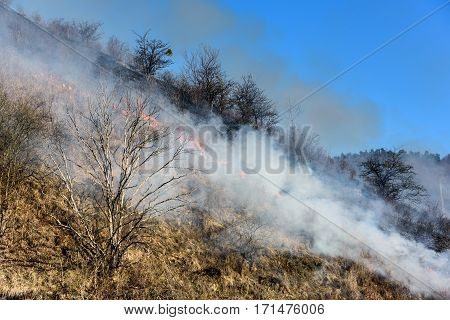 Farmers burn the grass on hill early spring, another cause of global warming. Smoke pollution.