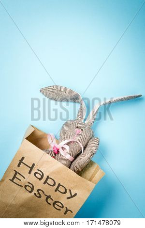 Easter bunny in a paper bag. Rabbit. Blue background. Easter ideas. Easter eggs. Space for text. Black lettering happy easter.