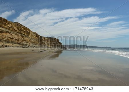 Cliffs, blue sky, and  wide, reflective beach at low tide, Torrey Pines State Reserve, LaJolla, California