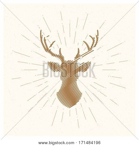 Hand drawn vintage deer. Sketch style. Vector illustration. T-shirt print. Poster. Logo. Emblem. Fresh organic food Moose Horns Elk