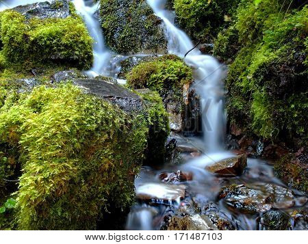 Smooth flowing Proxy Falls on the Old Mckenzie Highway in Western Oregon's Cascade Mountains running through moss covered rocks on a fall day.