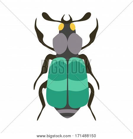 Insect icon flat isolated on white background. Nature flying butterfly beetle vector ant. Wildlife spider grasshopper or mosquito cockroach animal illustration.