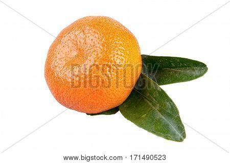 Mandarin with leafs isolated over white background
