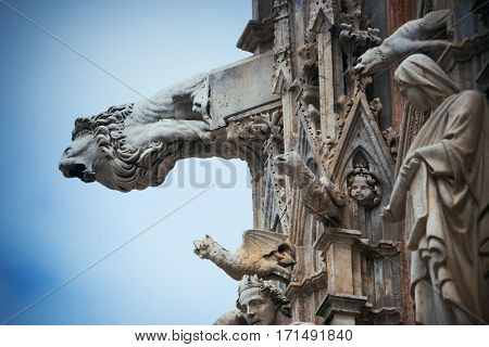 Siena Cathedral gargoyle closeup as the famous landmark in medieval town in Italy.