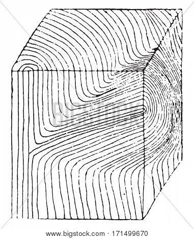 Carved wooden cube at a branch, vintage engraved illustration.