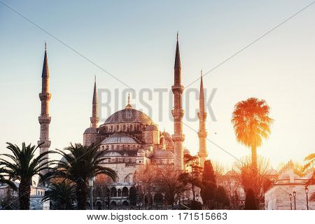 Illuminated Sultan Ahmed Mosque before sunrise, Istanbul, Turkey