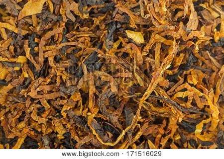 Closeup background texture of classic blended aromatic pipe tobacco with vanilla flavor