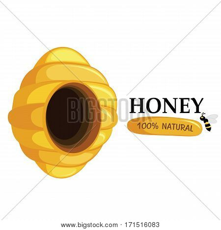 Honeycomb and bee on white background. Honey and bee natural icon.