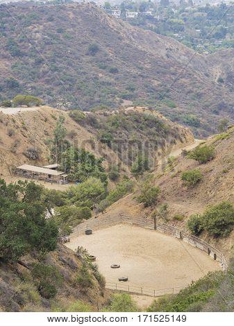 Stud Farm In Hollywood Hills