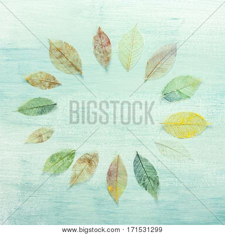 A square frame made up by hand painted skeleton leaves on a teal background texture. A design for an autumn banner, with copy space