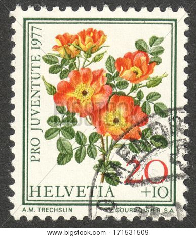MOSCOW RUSSIA - CIRCA JANUARY 2017: a post stamp printed in SWITZERLAND shows