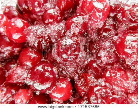 Sugared cranberries holiday dessert background close up