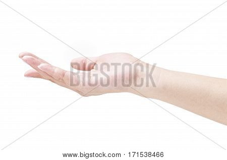 cradling hand of a female isolated on white background.