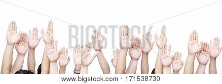 large group of people raising their hands isolated on white background.