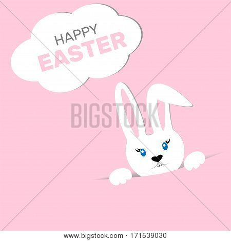 Easter Bunny On A Colored Background