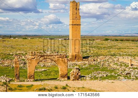 This is the picture of the World's first university Harran University. The remainings of the university is located in Sanliurfa Turkey. The shot was taken cloudy day. tower and some parts are still visible.