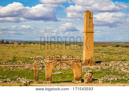 This is the picture of the World's first university Harran University. The remainings of the university is located in Sanliurfa Turkey. The shot was taken cloudy day. tower and some gates are still visible.